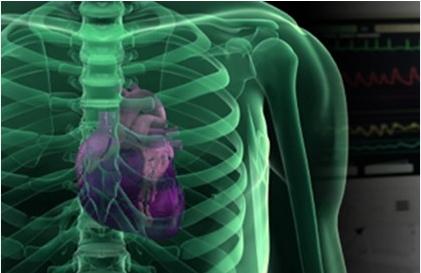 Corso di riabilitazione cardiologica e prevenzione cardiovascolare 2021