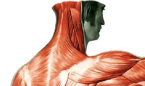DEMO AGENAS-eziologia del danno nervoso periferico